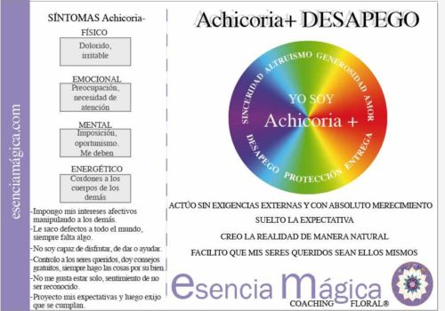 tarjeta coaching floral achicoria-desapego