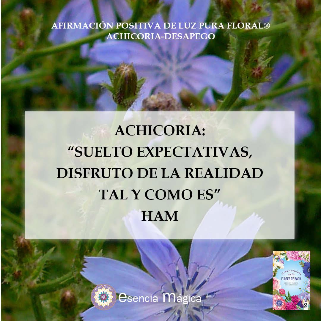 Afirmación positiva de Luz Pura Floral. Achicoria-Desapego