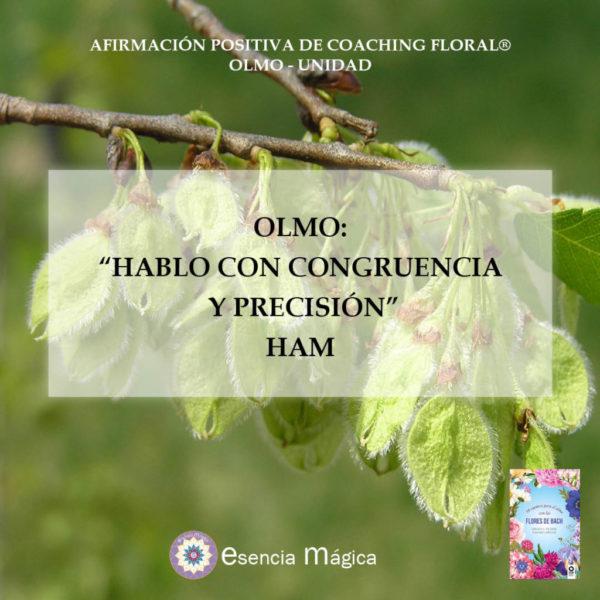 Olmo-Unidad Afirmación positiva del Coaching Floral