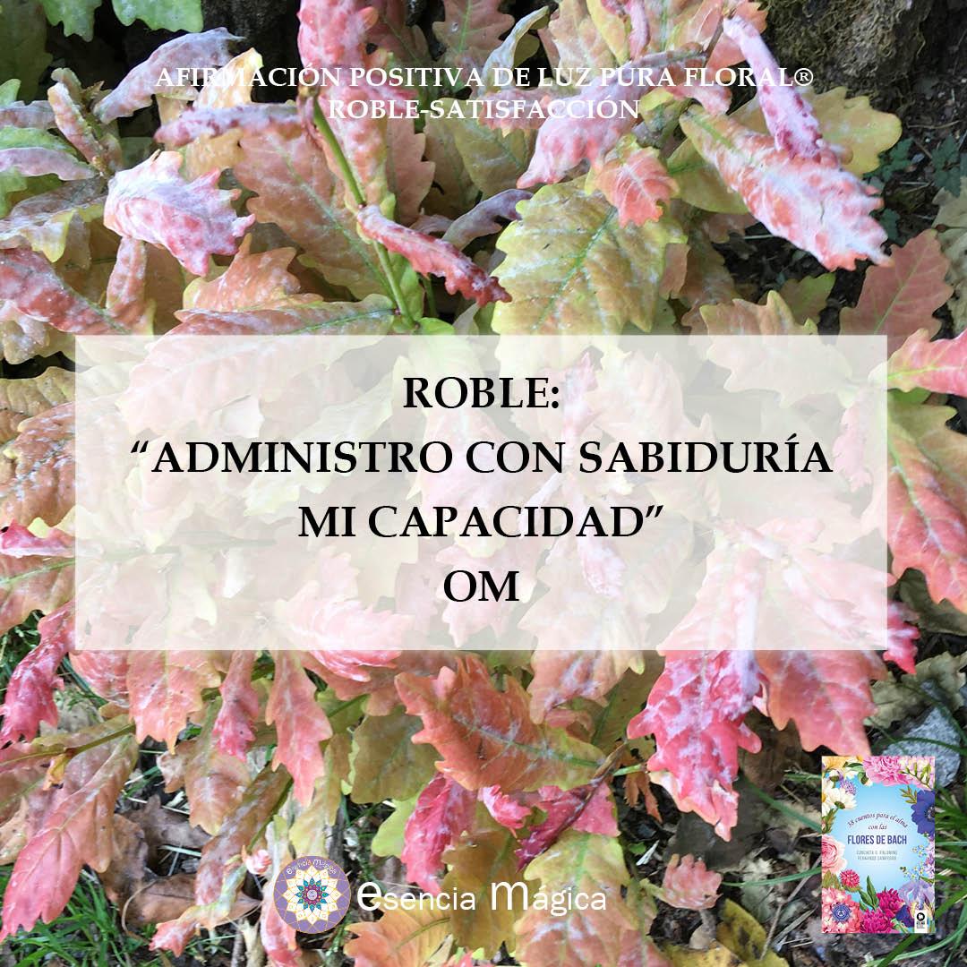 Afirmación roble-satisfacción