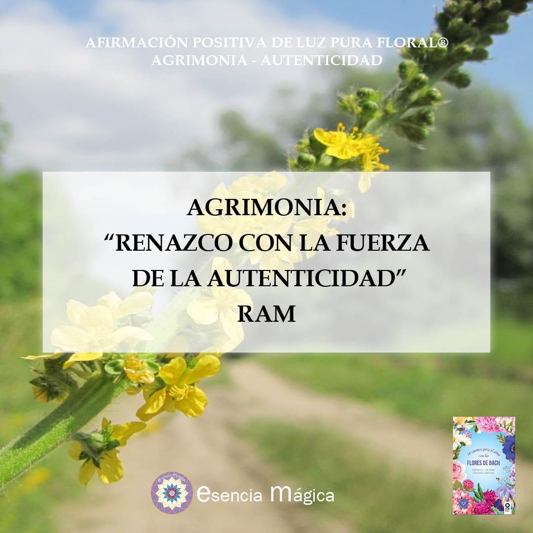 AGRIMONIA AUTENTICIDAD AFIRMAMCIÓN POSITIVA DE LUZ PURA FLORAL