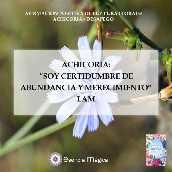 Afirmación positiva de Luz Pura Floral-Achicoria-desapego