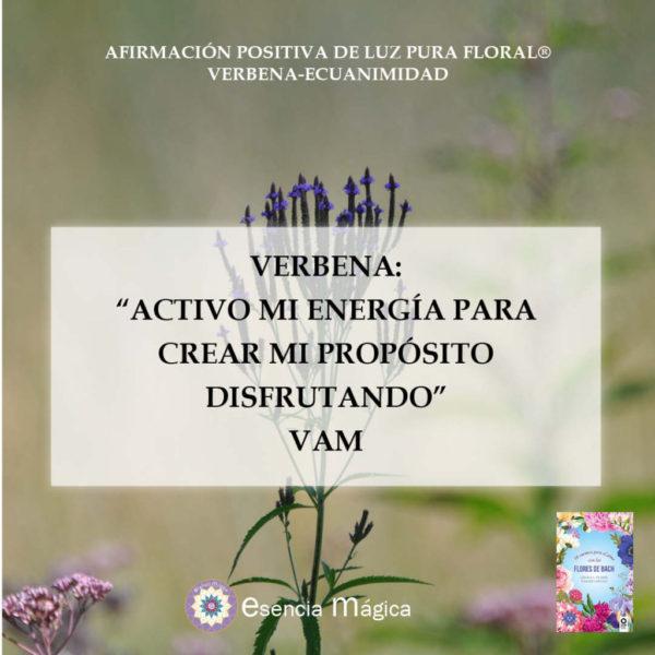 Afirmación positiva de Luz Pura Floral-Verbena-Ecuanimidad