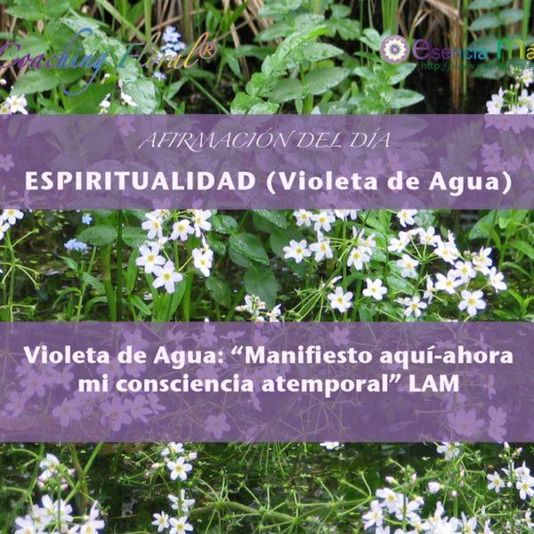 Afirmación del día de Luz Pura Floral. Violeta de Agua-Espiritualidad