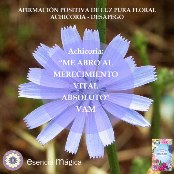 Afirmación positiva de Luz Pura Floral