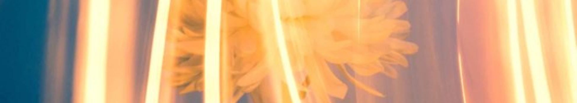 activación-telares-de-luz-de-las-estrellas