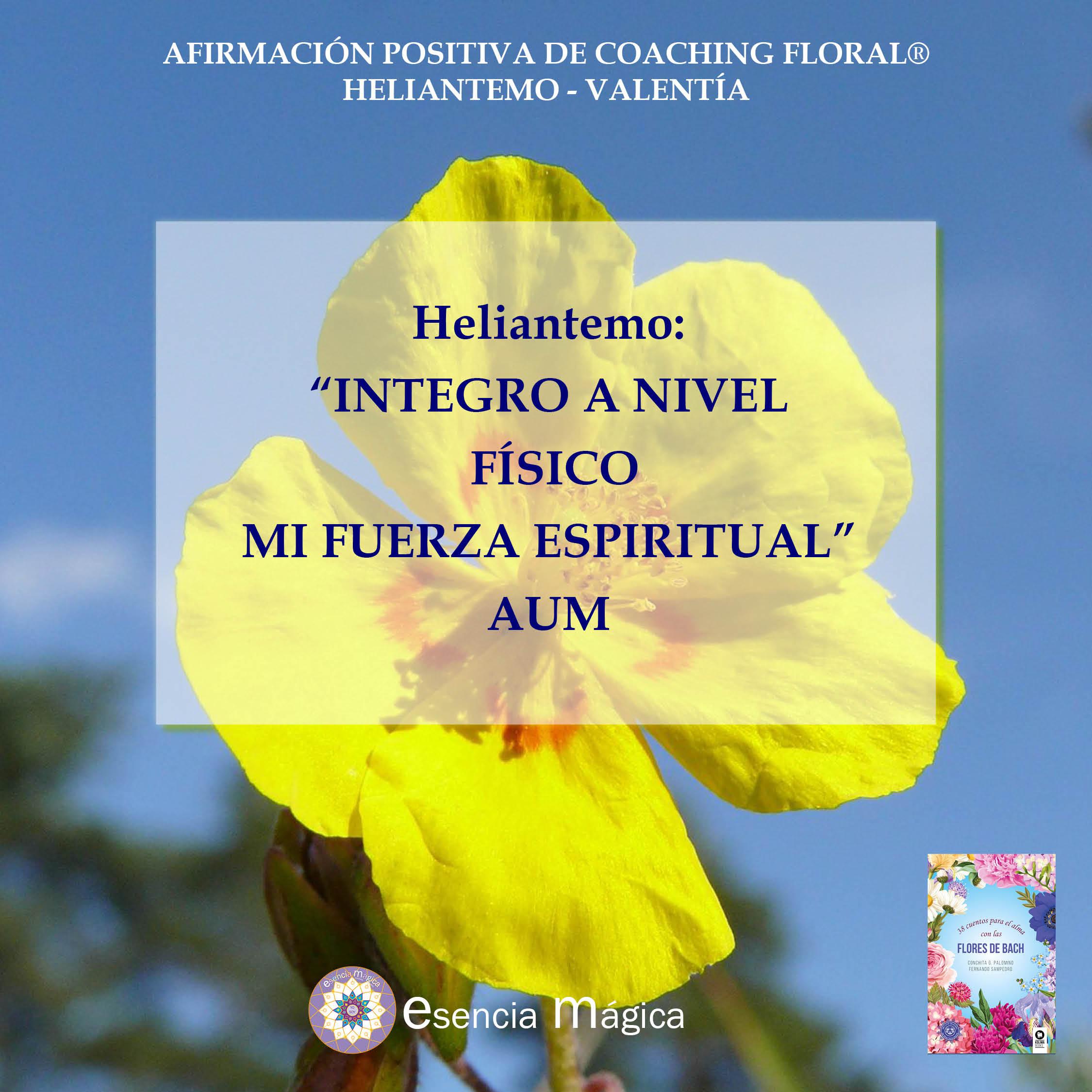 Afirmación positiva de Luz Pura Floral. Heliantemo - Valentía