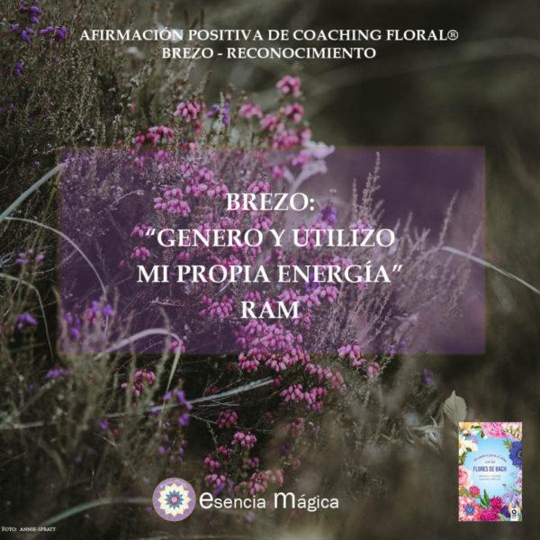 Afirmación positiva de Luz Pura Floral. Brezo-Reconocimiento