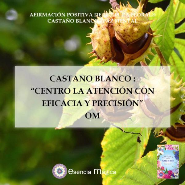 Afirmación positiva de Luz Pura Floral. Castaño Blanco-Paz Mental