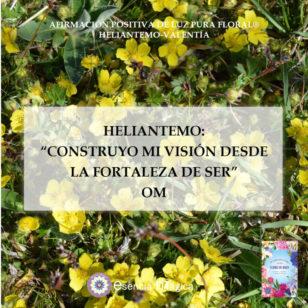 Afirmación positiva de Luz Pura Floral. Heliantemo-Valentía