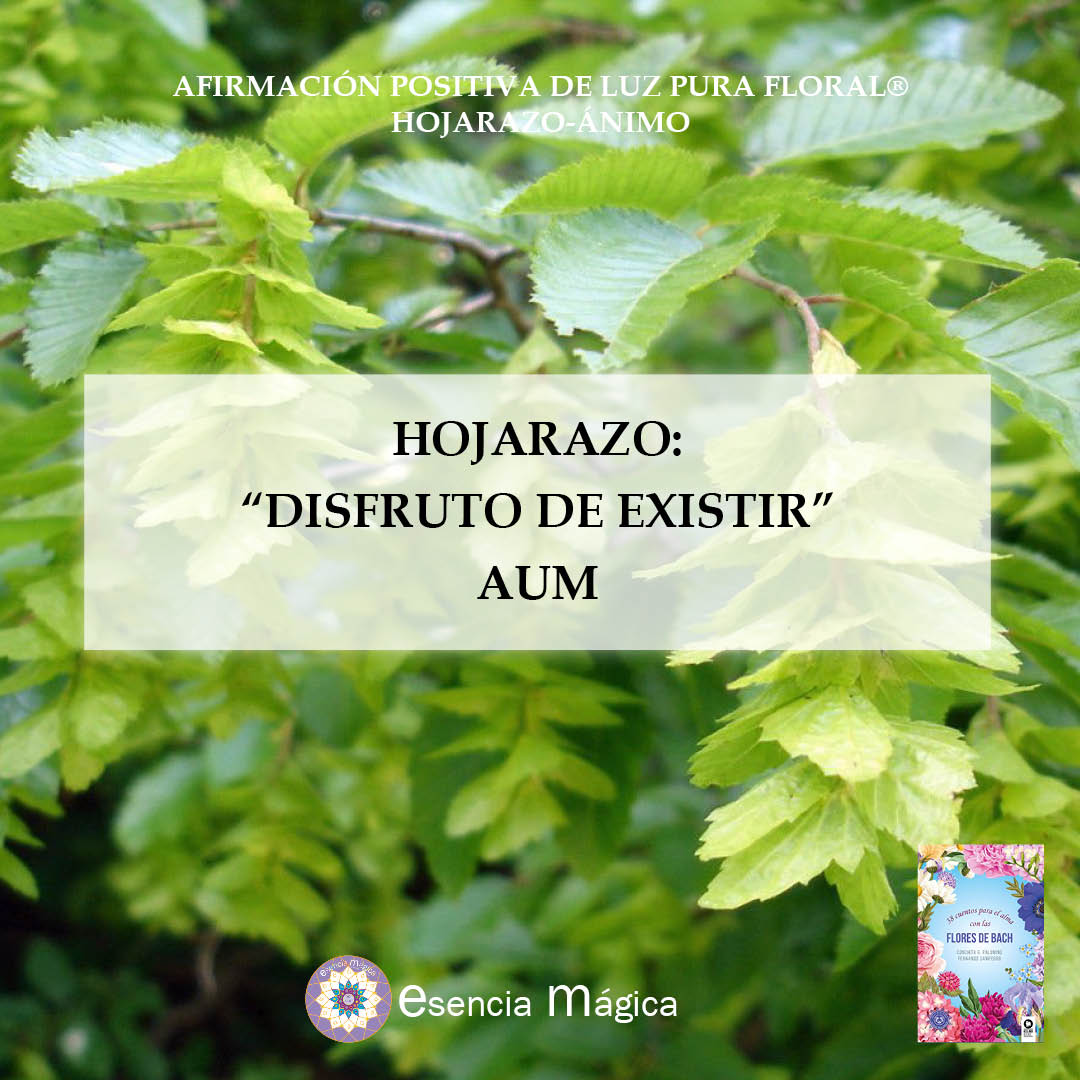 Afirmación positiva de Luz Pura Floral. Hojarazo-Ánimo