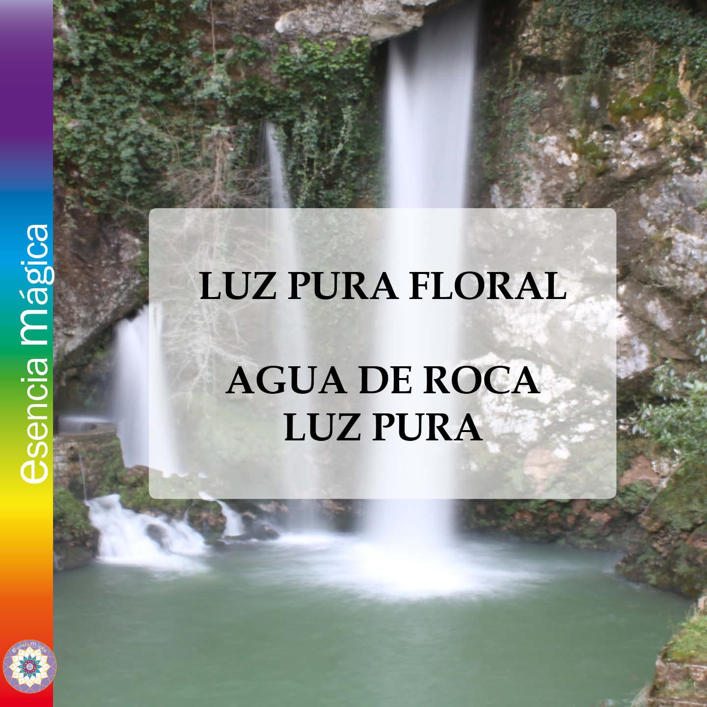 AGUA DE ROCA 2021