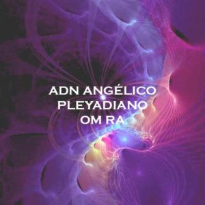 ADN Angélico Pleyadiano. Om Ra