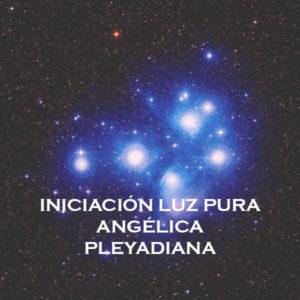 Iniciación Luz Pura Angélica Pleyadiana