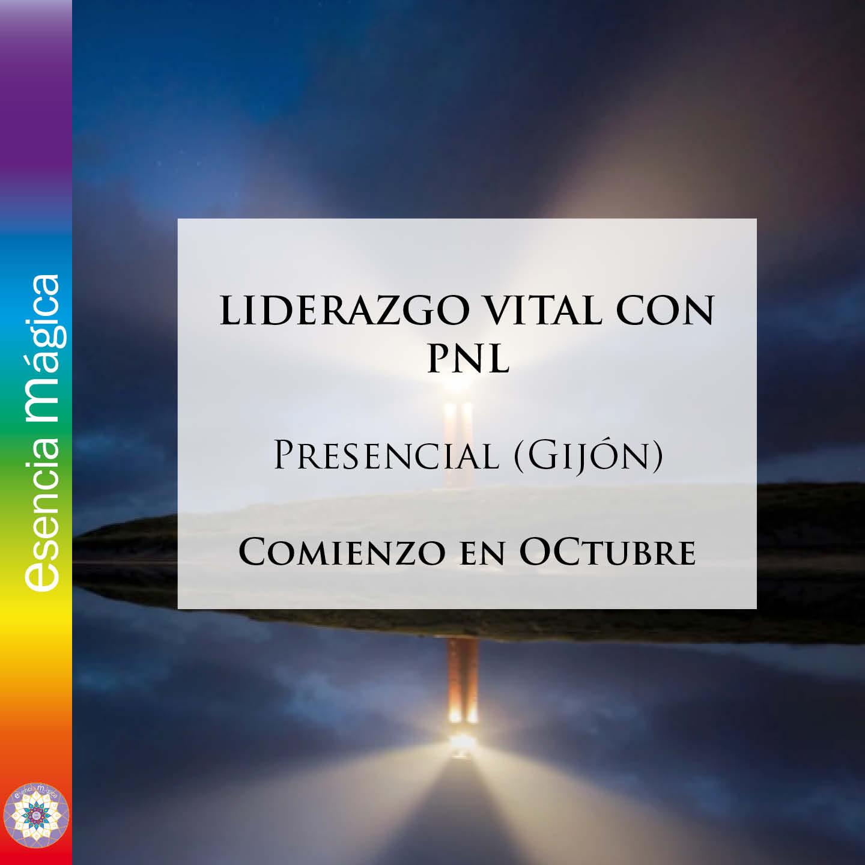 LIDERAZGO VITAL CON PNL 1